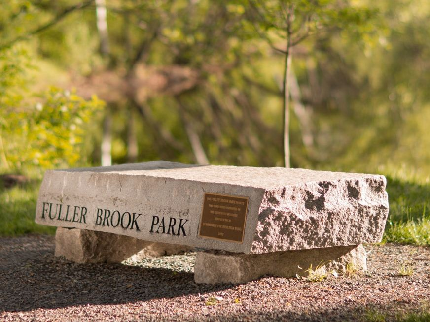 Fuller Brook Park bench