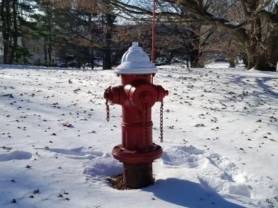 Hydrant Snow